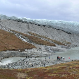 Nature on Greenland